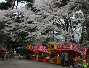 100407_omiyapark_sakura3