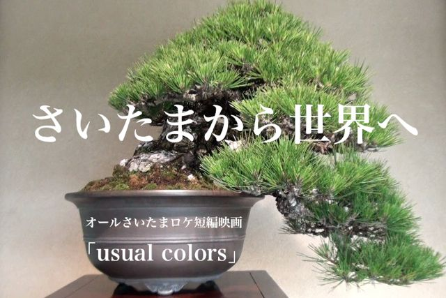 usual_colors_web