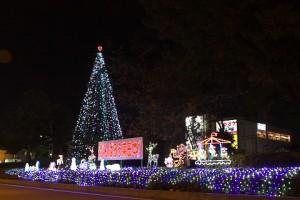 東浦和駅前クリスマスツリー点灯式