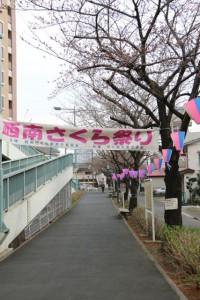2014mogitate_seinansakuramatsuri_kamban