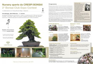 BONSAI_CLUB_EXPO_CONTEST_2015