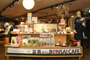 bonsaicafe01