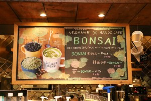 bonsaicafe04